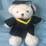畢業熊B 款: 11 吋