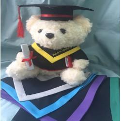 畢業熊A 款: 10 吋