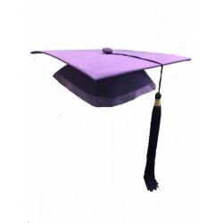 KM01f  紫色 幼稚園畢業帽